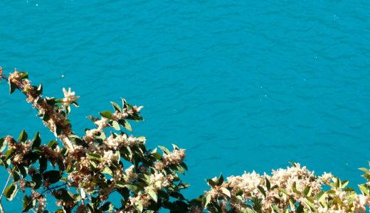 ゆるキャン△探訪記:エメラルドブルーのダム湖と、古民家カフェと奈良田の里温泉と。