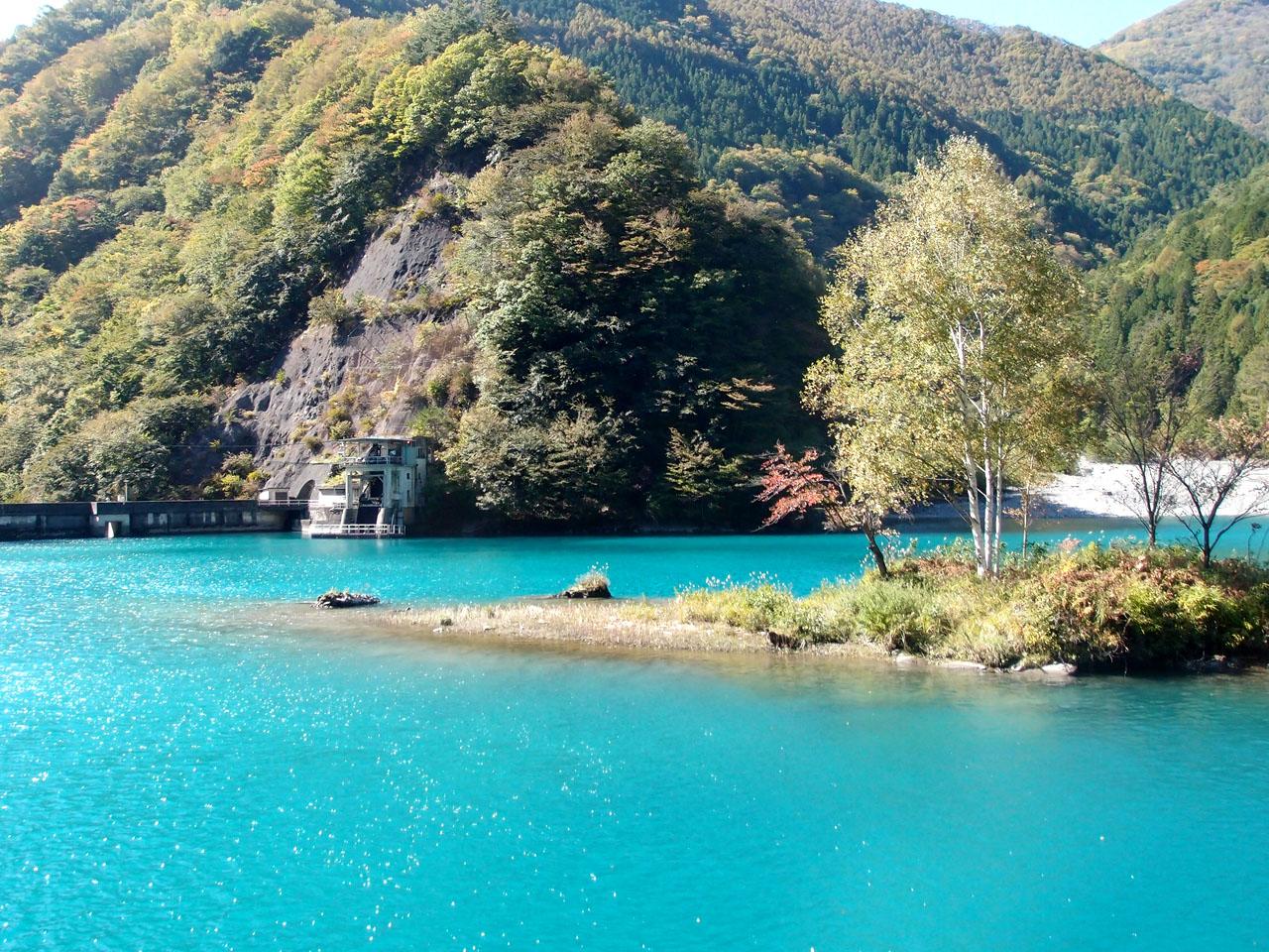 奈良田湖の小島