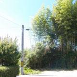 夏休みと電柱