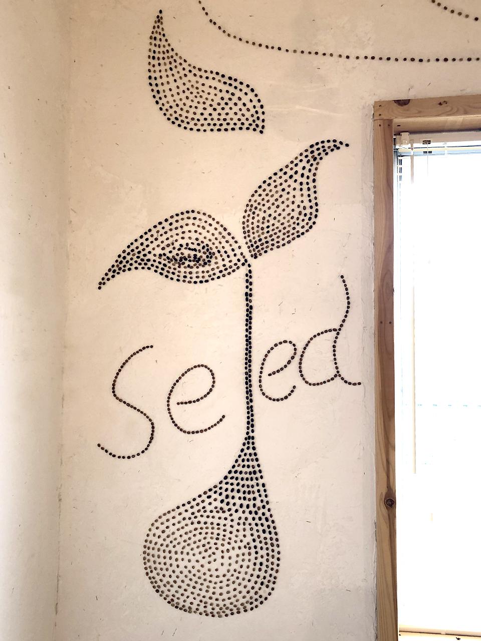 富士宮市Seed Cafeさん:種から芽